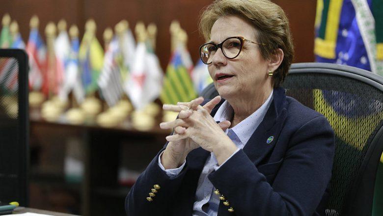 Bia Kicis quer que Tereza Cristina seja presidente da Câmara: '200 votos ela já tem'